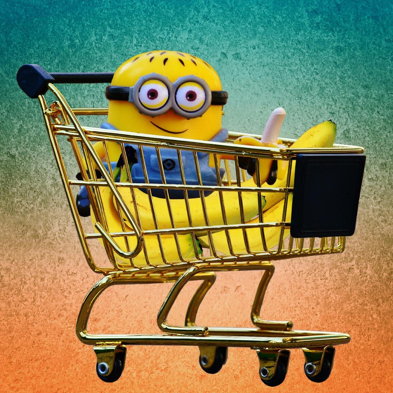 Video Alert : Lady Raga Subscription Bag Feb 2016 Review & Random Shopping hauls